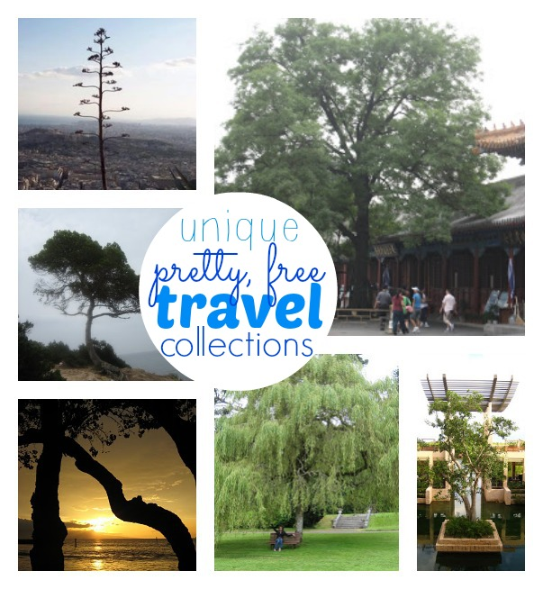 Unique travel collections