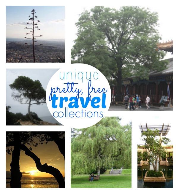 Unique travel collections