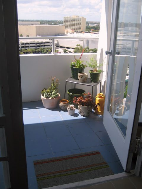 shade balcony plants