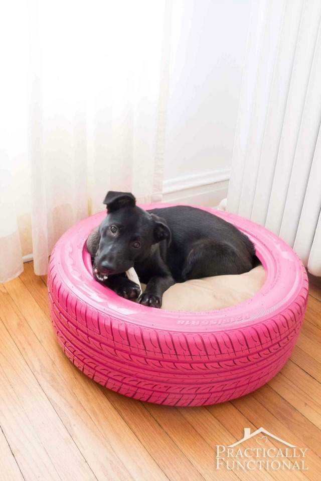DIY-Dog-Bed-From-A-Tire