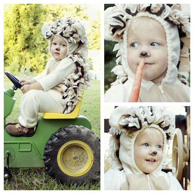 37 Homemade Animal Costumes - C R A F T