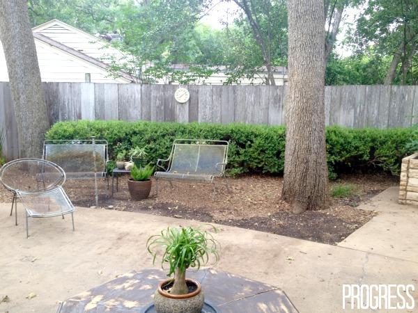 remove bushes
