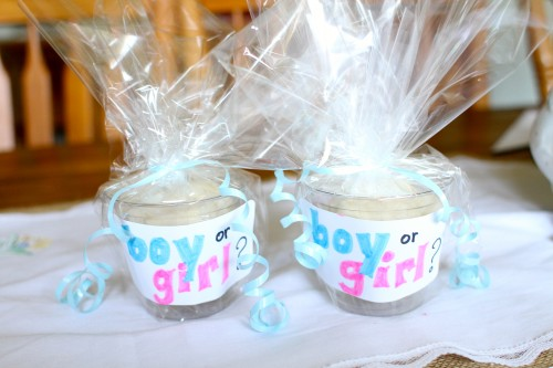 Gender reveal ideas for siblings