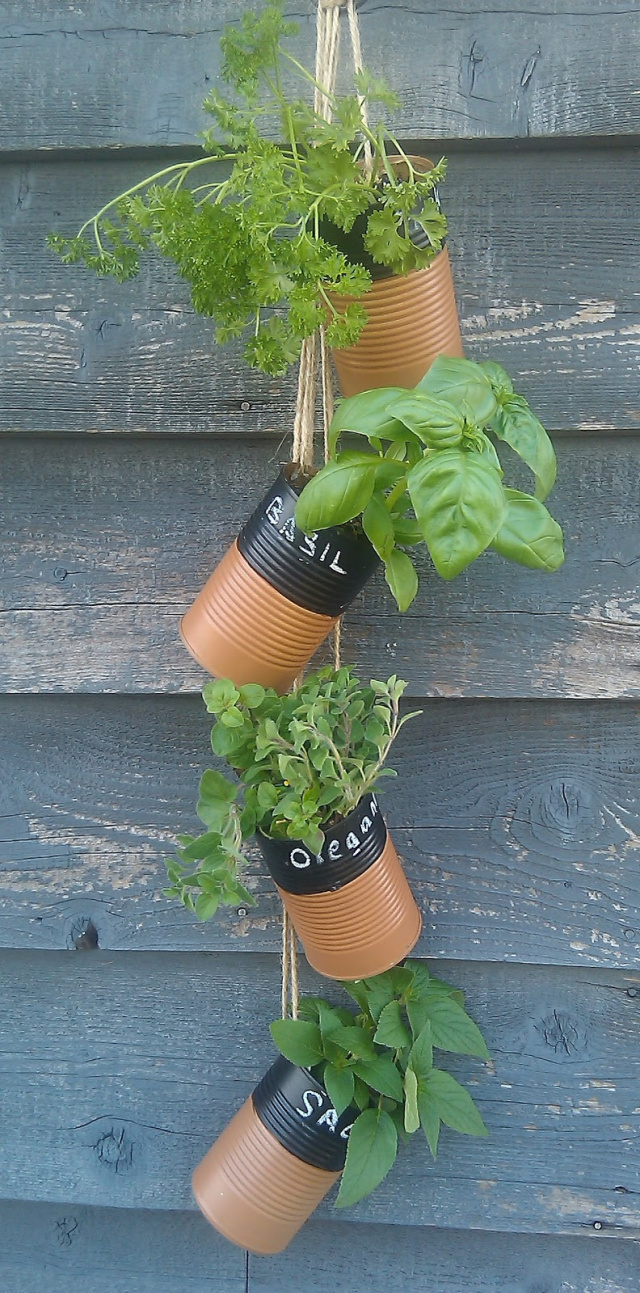 Tin can hanging garden