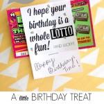 101+ DIY Birthday Gifts