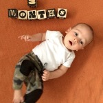 Maxwell monthly (The first 6 months!)