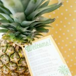 41 Pineapple crafts