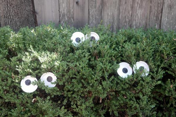Halloween yard ideas