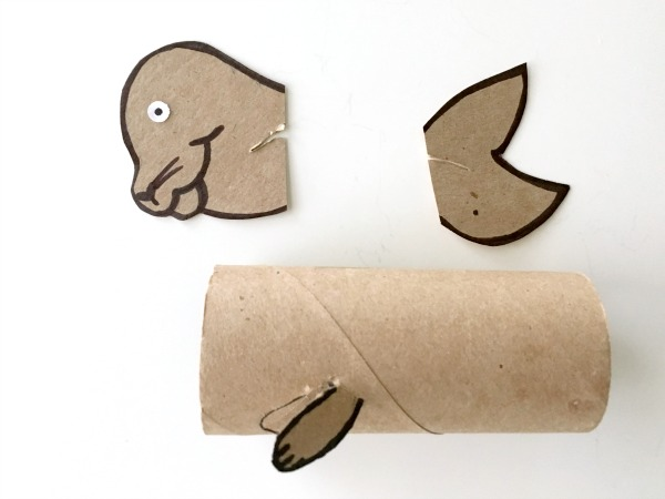 Seal toilet paper roll craft for kids