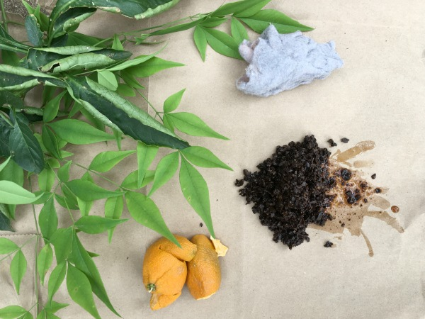 Composting with kids