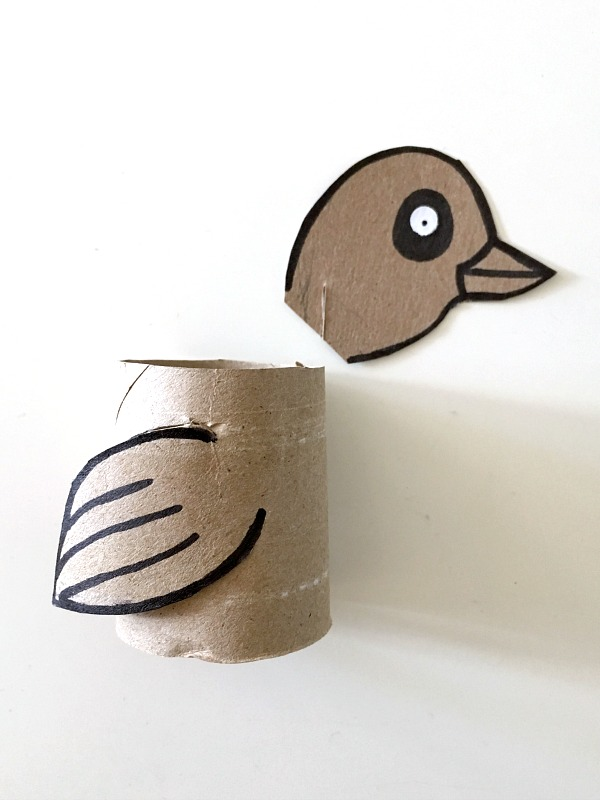 xenops toilet paper roll craft