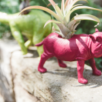 How to Make an Upcycled Animal Planter with Tom's of Maine