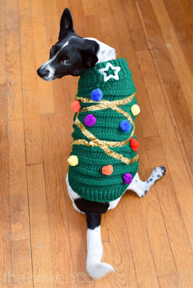 DIY dog Christmas sweater