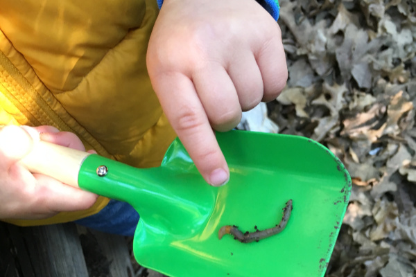 Composting 101 with kids